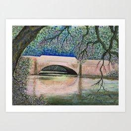 Biltmore Bridge Art Print