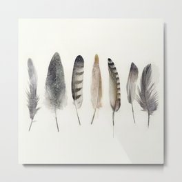 earth feathers Metal Print