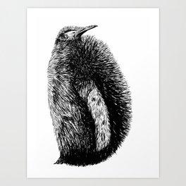 Penguin sketch Art Print