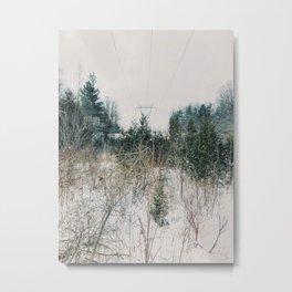 City and Nature Metal Print
