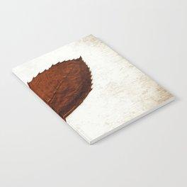 Fallen Notebook