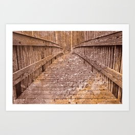 Acrylic Sepia Bridge Art Print