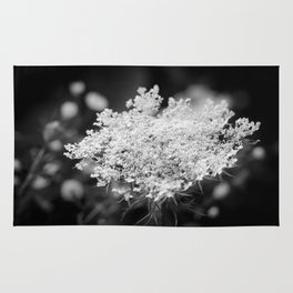Queen Anne's Lace Flower Series Rug