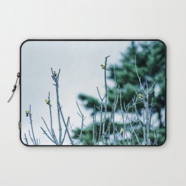 Six Finches in a Tree Laptop Sleeve