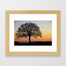 Lonely Tree Sunset Silhouette Framed Art Print