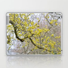 Springtime Nears Laptop & iPad Skin