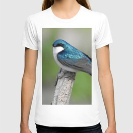 Male Tree Swallow II T-shirt