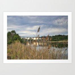 Rail Trail Art Print