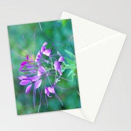 Cleome Stationery Cards
