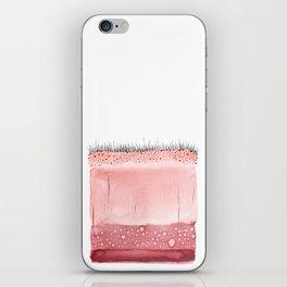 Layers iPhone Skin