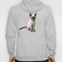 Siamese Kitten Hoody