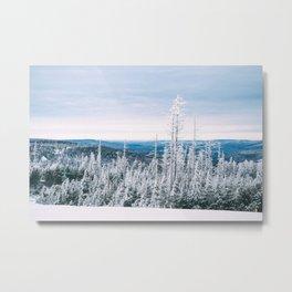 Atop Grab Hammer Trail, Snowshoe, WV, 2014 Metal Print