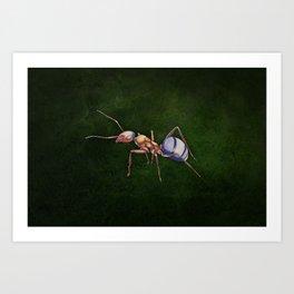 Formica (Wood Ant) Art Print