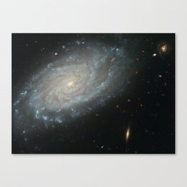 Celestial Composition Canvas Print