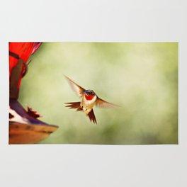 The Hummingbird Rug