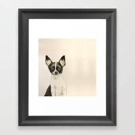 Chihuahua - the tiny dog Framed Art Print