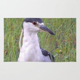 Night Heron in the Green Grass Rug