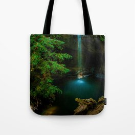 Big Basin Redwood State Park, Boulder Creek, CO Tote Bag