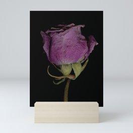 Ana - Dried Rose Scanography Portrait Mini Art Print