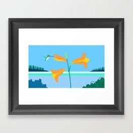 Ruby Throated Hummingbird Eastport, Maine Framed Art Print
