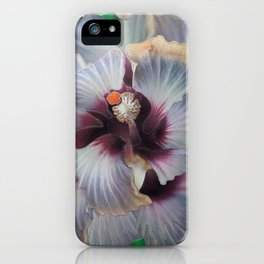5th Dimension iPhone Case