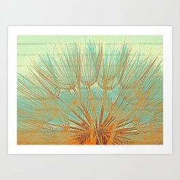 Dandellion flower Art Print