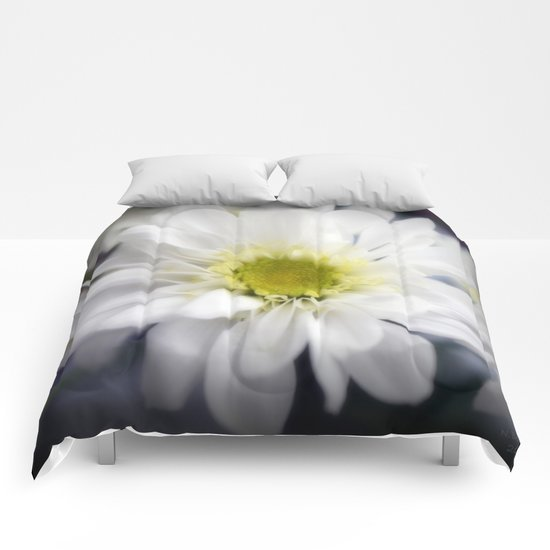 Flower | Flowers | Daisy with Yellow Centre Comforters