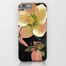 Helleborus iPhone 6s Slim Case