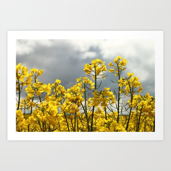 Bright Yellow to the Storm Art Print