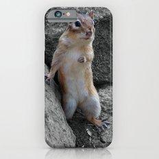 Standing Chipmunk Slim Case iPhone 6s