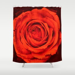 Vintage Rose,red Shower Curtain