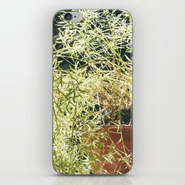 nature 1 iPhone Skin