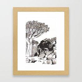 Quiver Tree & Rocks - Namibia Framed Art Print