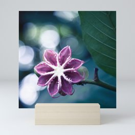 Single Little Purple Flower Mini Art Print
