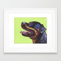 rottweiler Framed Art Prints featuring Rottweiler  by ArtEndeavors