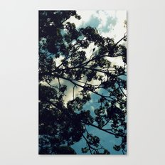 Against a Billow Cloud Canvas Print