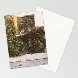 vines at 1003 Stationery Cards