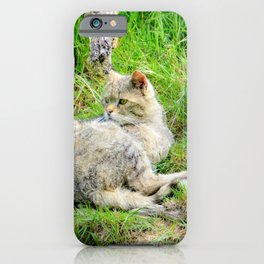Relaxed wildcat - wildlife photography iPhone Case