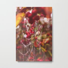 Dew Drops, Spider Webs and Apples, Oh my! Metal Print