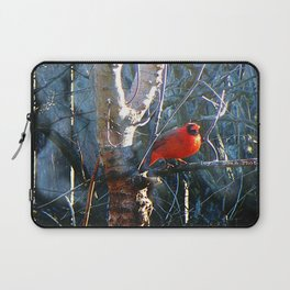 Cardinal Laptop Sleeve