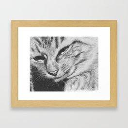 Pencil Drawing of Mr Cat Framed Art Print