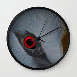 Victoria Crowned Pigeon Eye  Wall Clock
