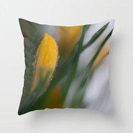 yellow crocus in spring Throw Pillow