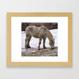 Workhorse Framed Art Print