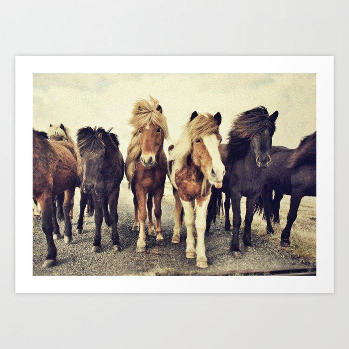 Horses Kunstdrucke