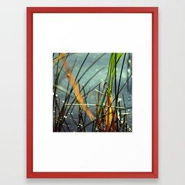 Dragonfly Lake Bokeh Framed Art Print