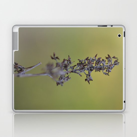 Pods Laptop & iPad Skin
