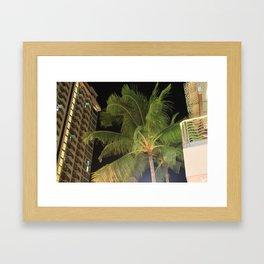 Waikiki Palm Framed Art Print