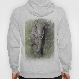 An African Elephant Illustration Hoody