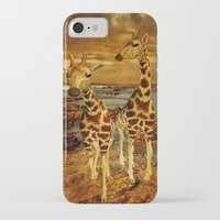 giraffes iPhone & iPod Cases featuring Giraffes by PineSinger